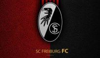 Câu lạc bộ bóng đá Freiburg – Lịch sử, thành tích của CLB